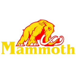 2200mAh 3S 11,1V 25C-50C LiPO Mammoth batería de seguridad conector DEANS